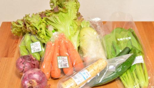 【ビオマルシェ体験談】お試しセットの有機野菜が驚くほどおいしかった