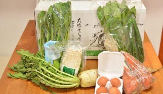 【無農薬野菜ミレー体験談】お試しセットのコスパはいい?注文して味を確かめてみた