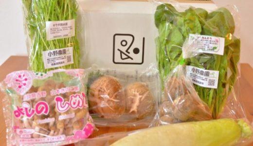 【ココノミ(141select)体験談】お試しセットは味がいい路地野菜が届く