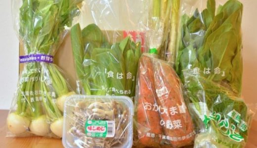 【無農薬野菜はにーびー体験談】お試しセットは大手の食材宅配に負けないおいしさ