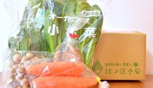 【坂ノ途中の体験談】お試しセットは味の濃い無農薬野菜が届いて大満足