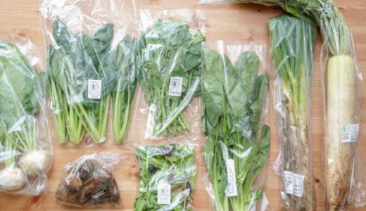 味が濃くて感動!無農薬・有機野菜の宅配おすすめランキング